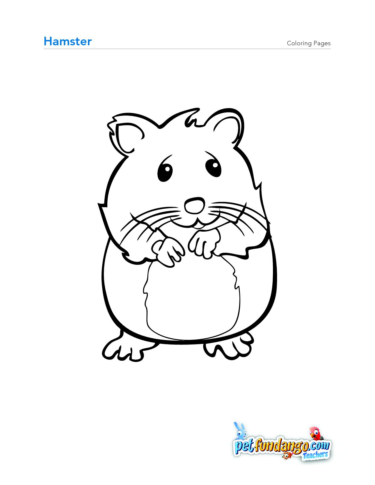 hamster | Street Sign Project | Pinterest