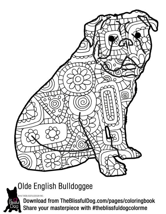 Pin de Ame Martin en coloring animals | Pinterest