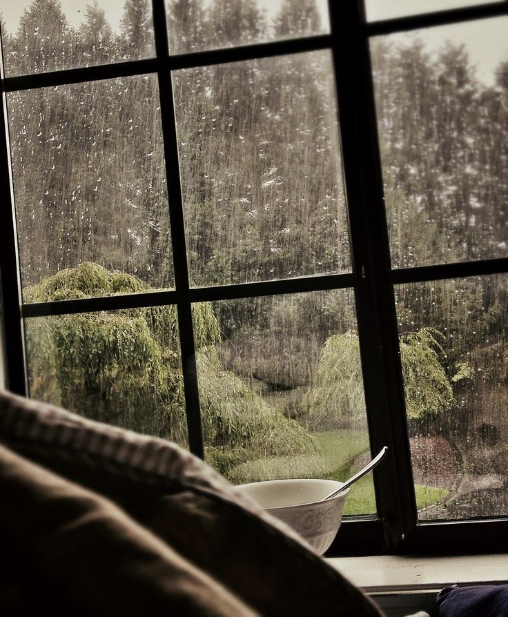 Cozy And Warm Watching The Rain Out My Window Out My