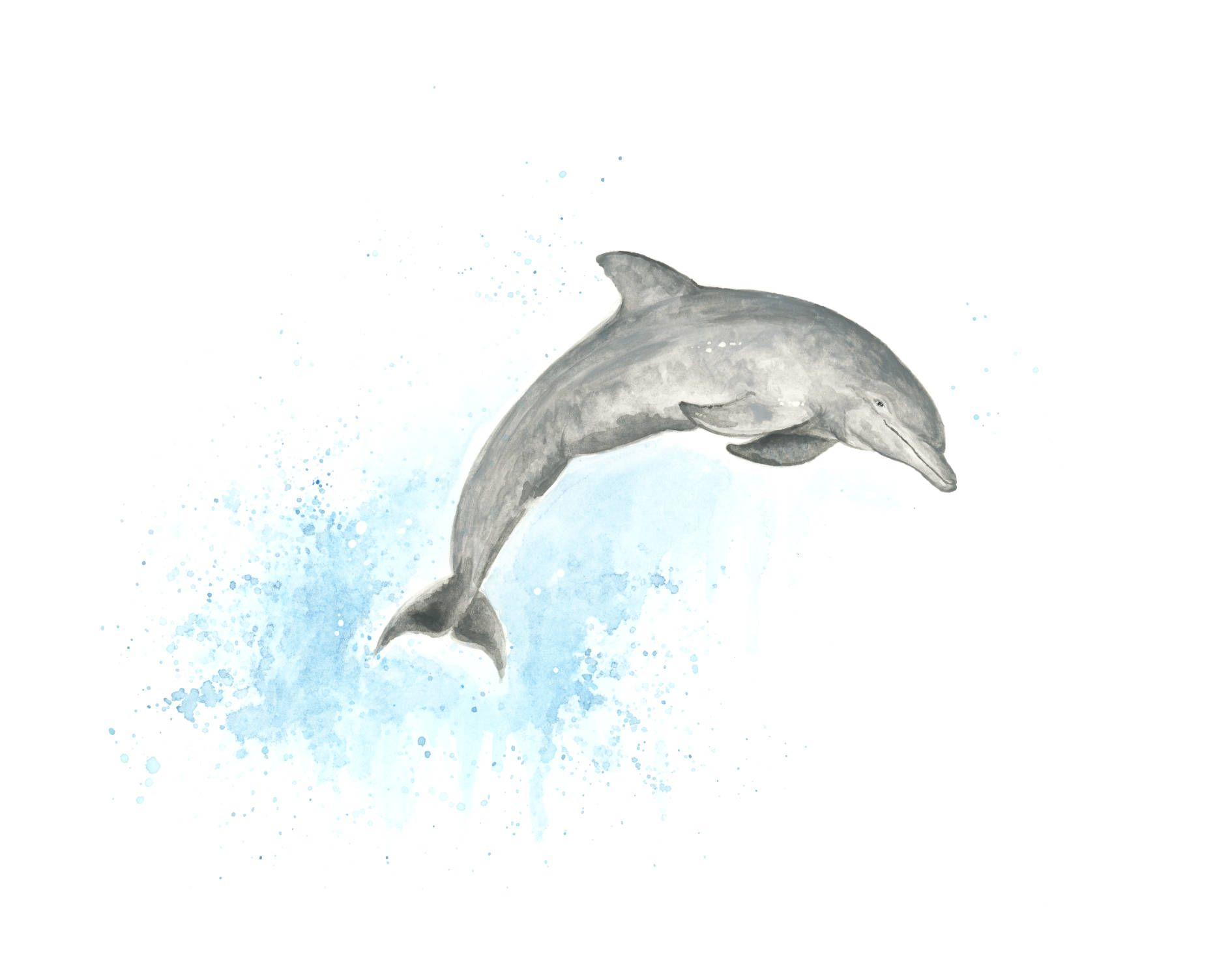 - Dolphin Print, Watercolour Art, Dolphin Painting, Nautical Decor