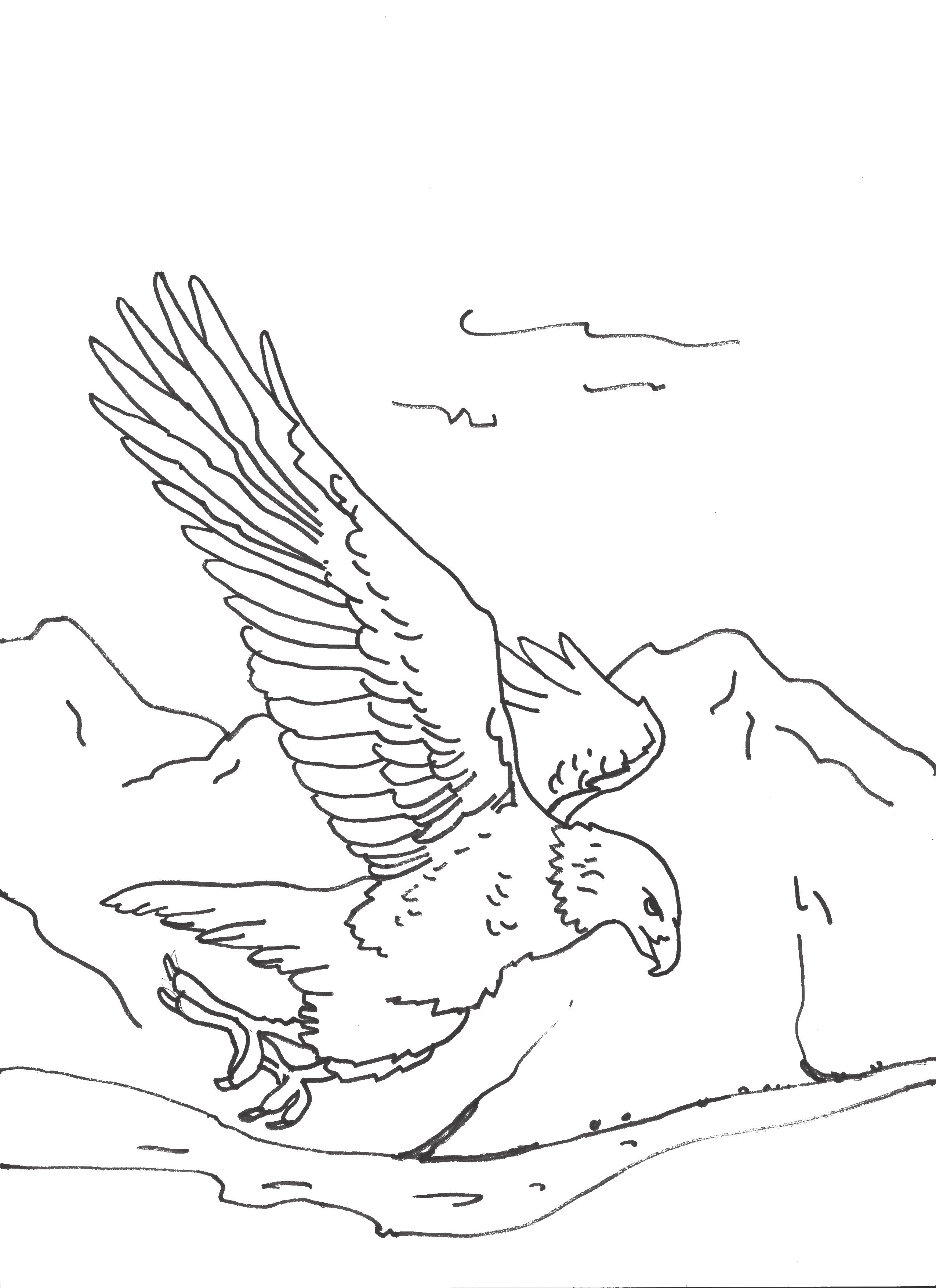 isaiah nivbut those who hope in the lord will renew their strength - Isaiah Coloring Pages For Kids