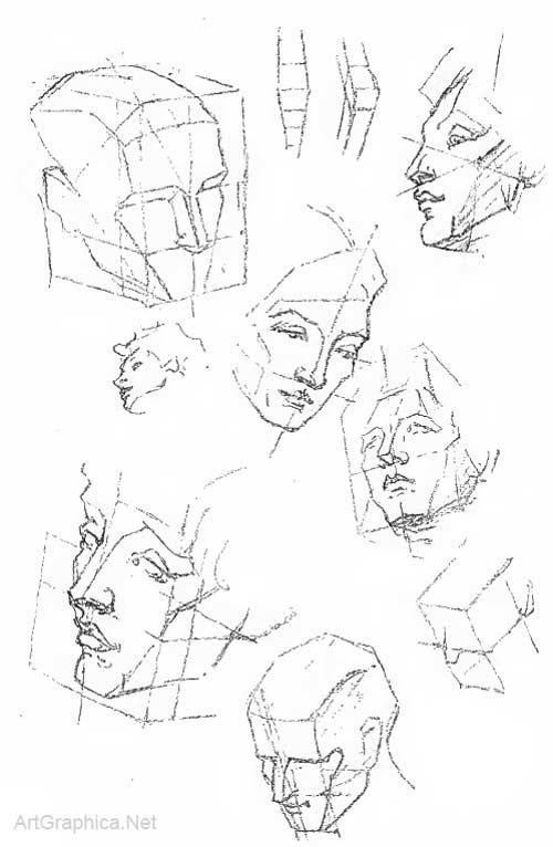 Free Art Books Online Study Drawing Pinterest Human Head Head
