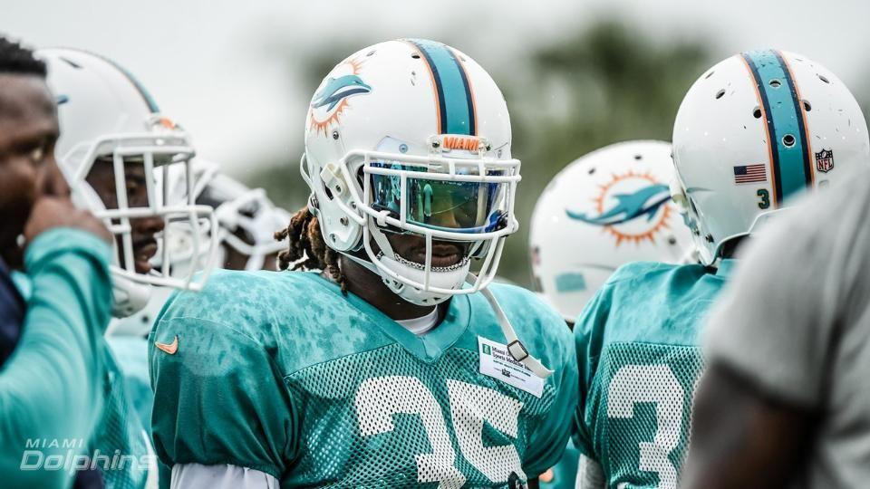Miami dolphins training camp 2017 shoc lightning 20