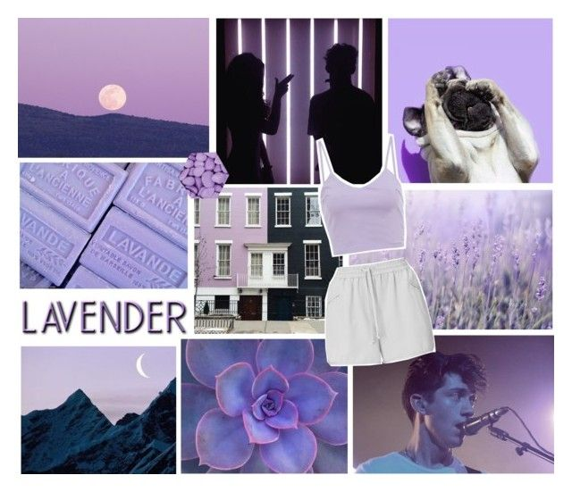 """fields of lavender"" by sabulous836 ❤ liked on Polyvore featuring AX Paris and Whistles"