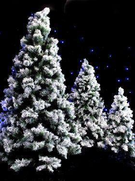 Snowy Tree - Jumbo - Type 2