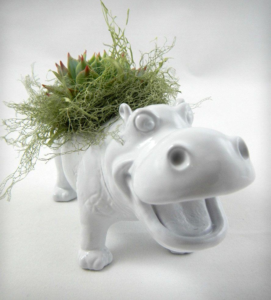 White Hippopotamus Planter with Water Stone Flower | Hippopotamus ...