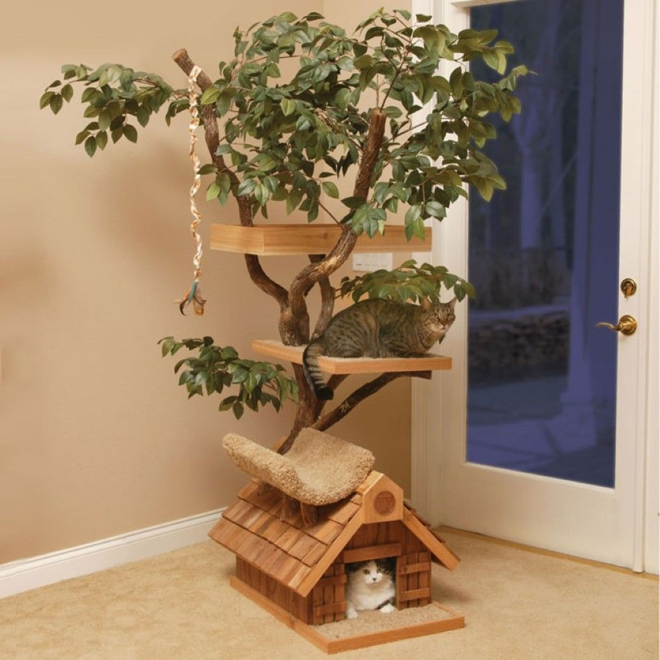 Realistic cat trees cool miniature home with front door