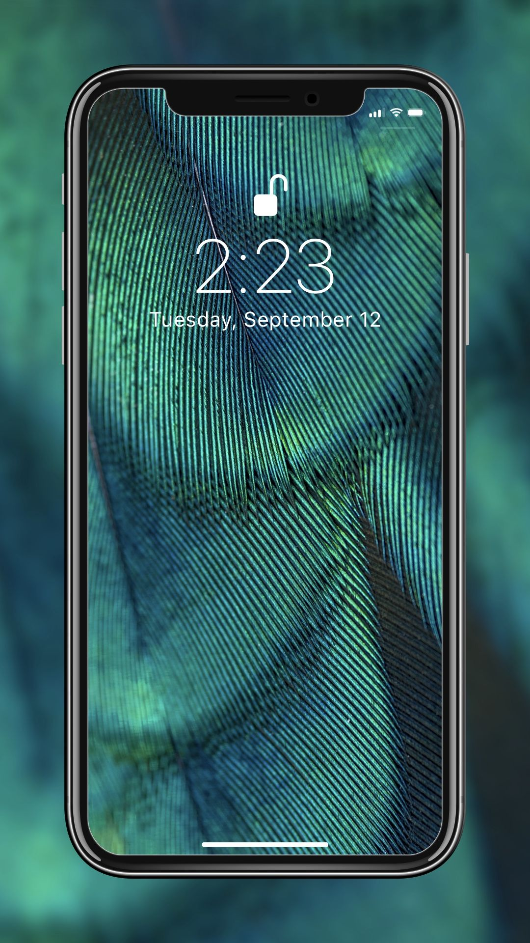 Amazing wallpaper for your iPhone 8 from Everpix🤩