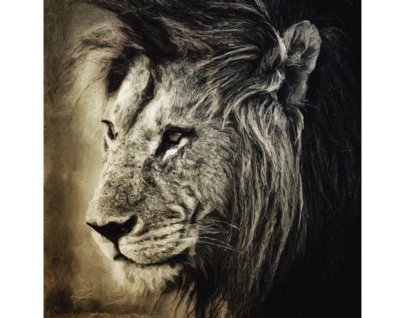 Artland Poster, Leinwandbild »Löwe Tiere Wildtiere Raubkatze Malerei« online kaufen | OTTO
