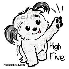 Cartoon Shih Tzu Stock Images Royalty Free Images Vectors