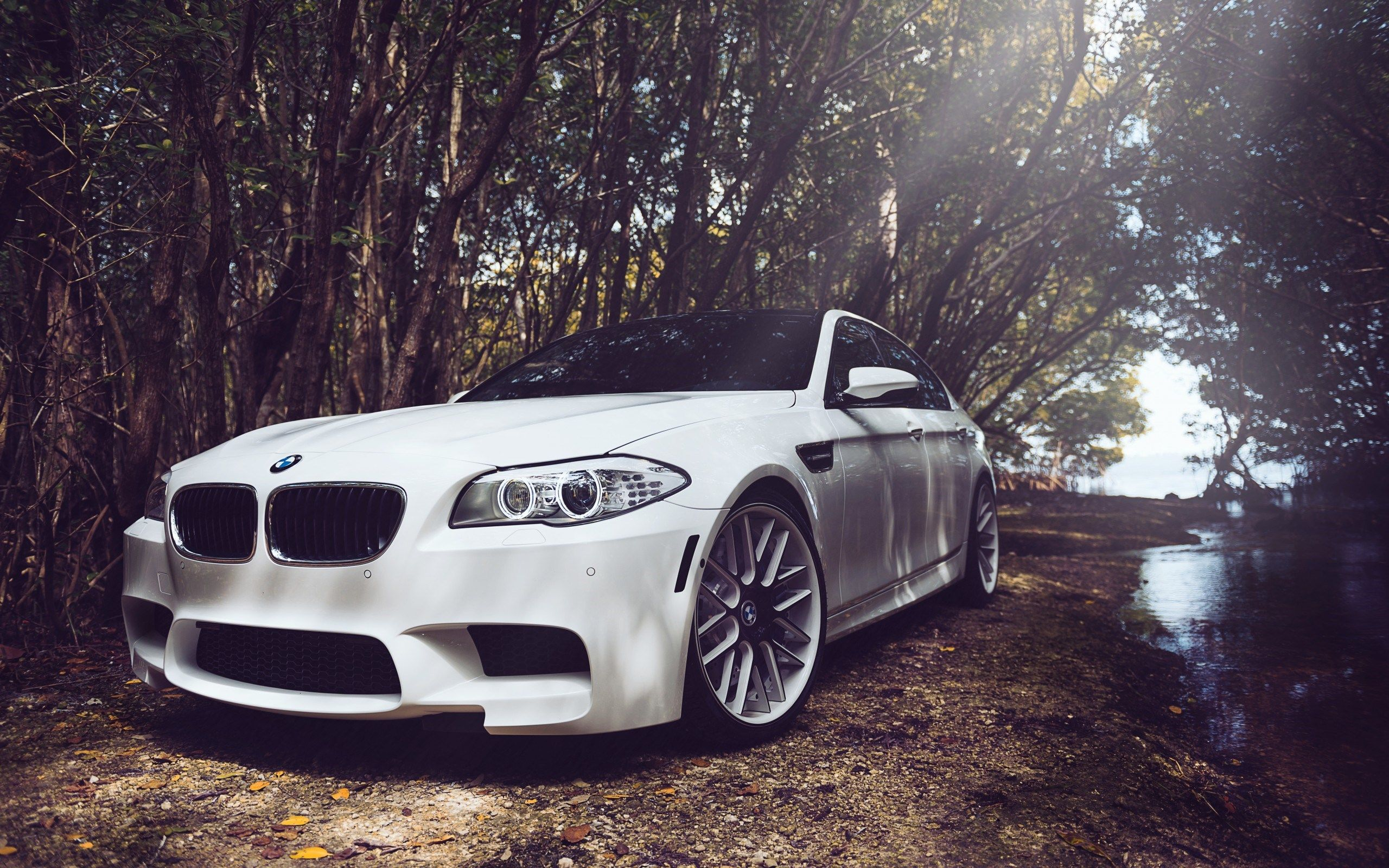bmw cars hd wallpapers free wallpaper downloads bmw sports cars
