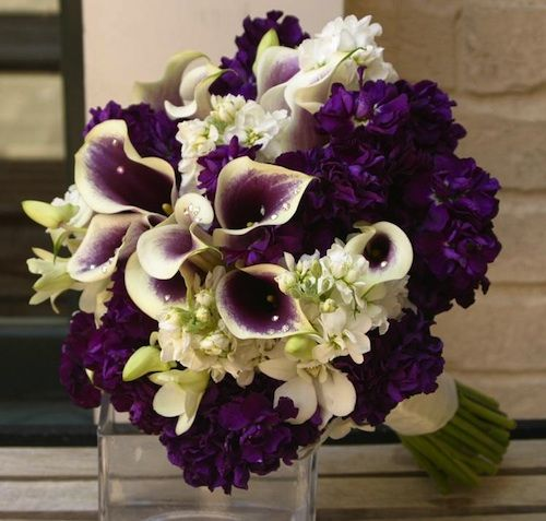 Eggplant Wedding Flowers: Eggplant Calla And White Orchid Bouquet