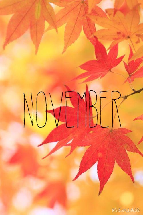 Hello November! No pin limits! Hello november, November