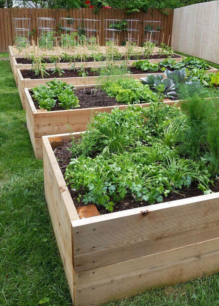 Mein erhöhtes Gartenbett bauen,  #bauen #Erhöhtes #gardenLandscapedesignraisedbeds #Gartenbet…