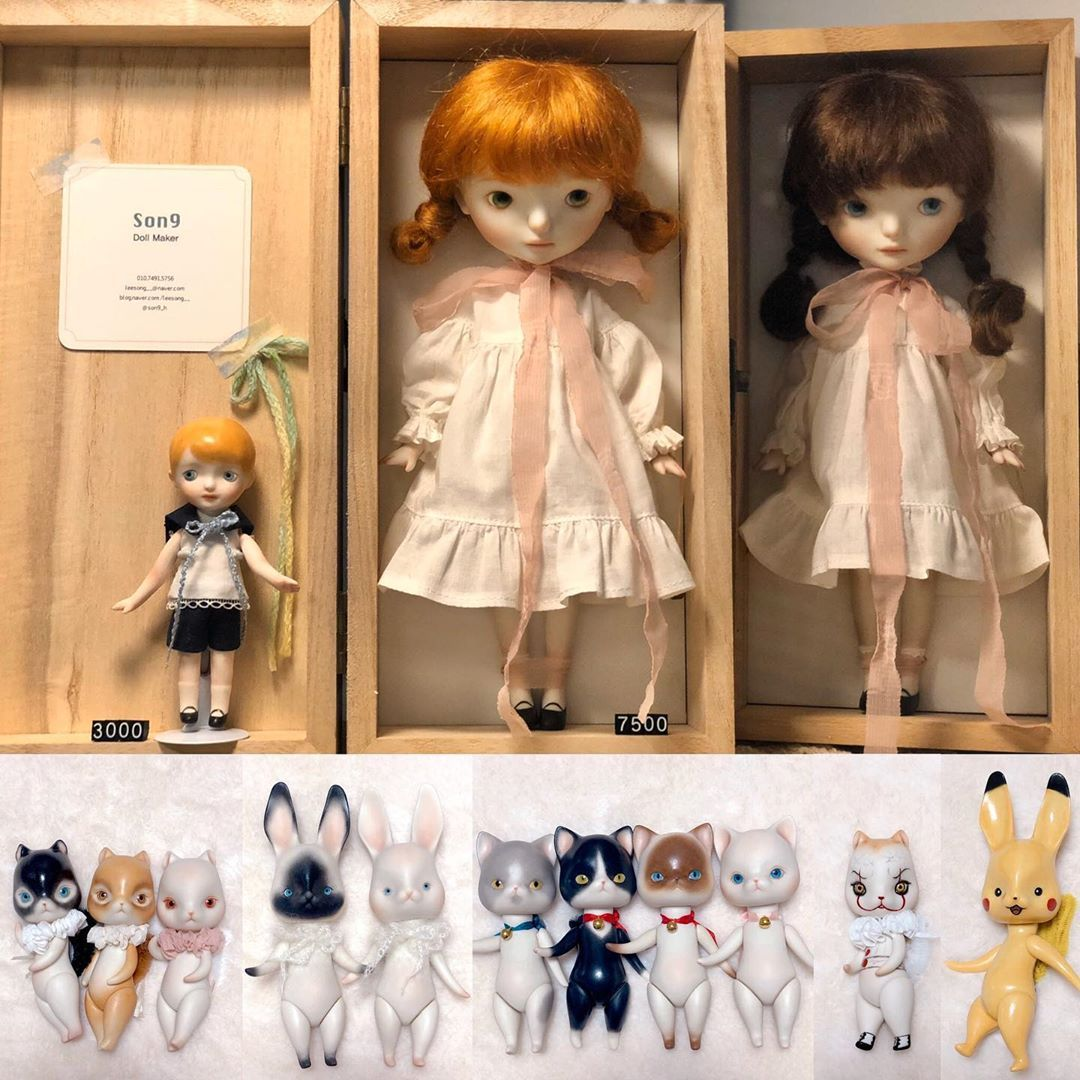 These are the dolls that participated in the TTF ☺️
