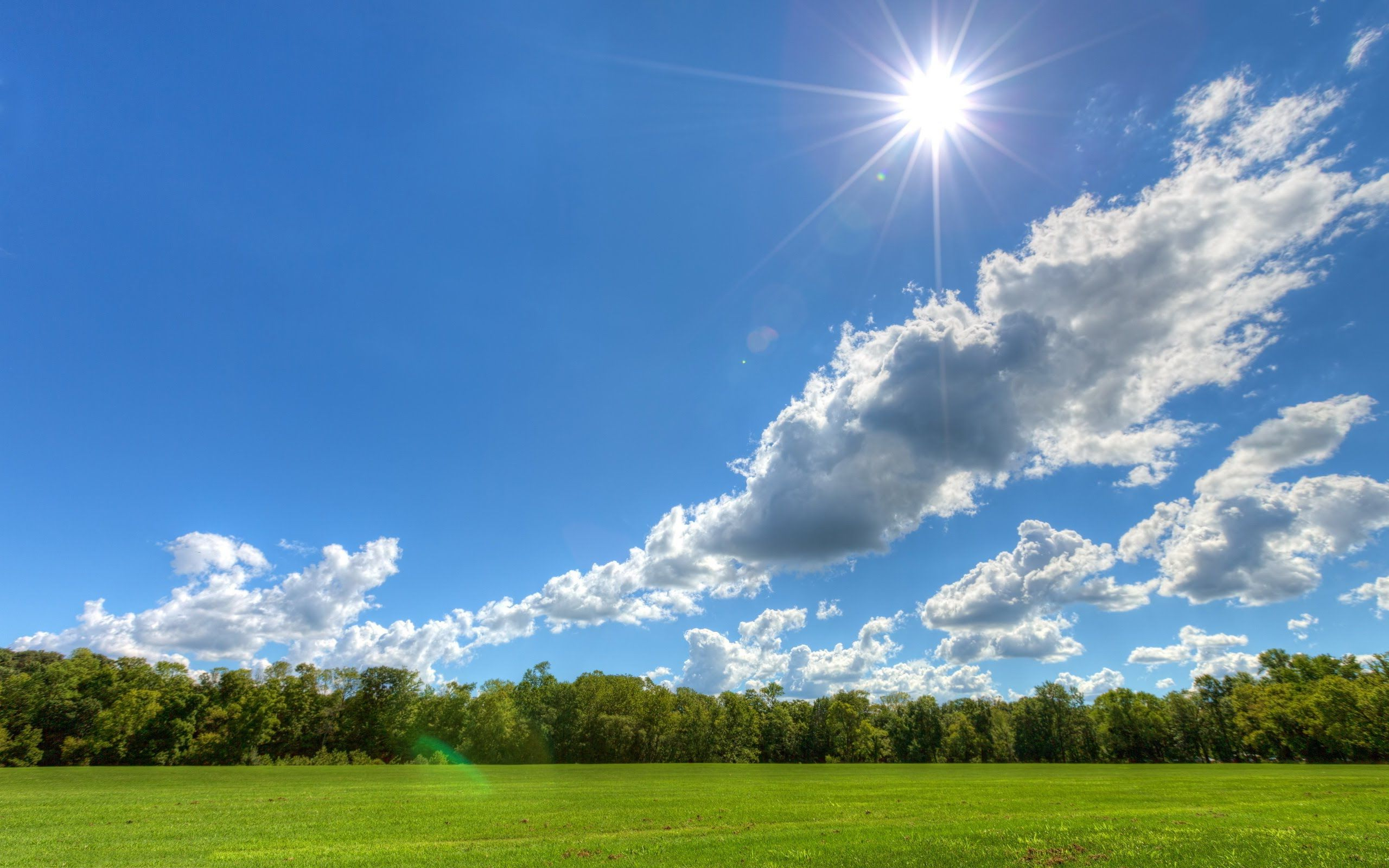 It S A Beautiful Day Today Enjoy Everyone And Don T Forget The Sun Cream Sunny Pictures Clouds Tree Desktop Wallpaper