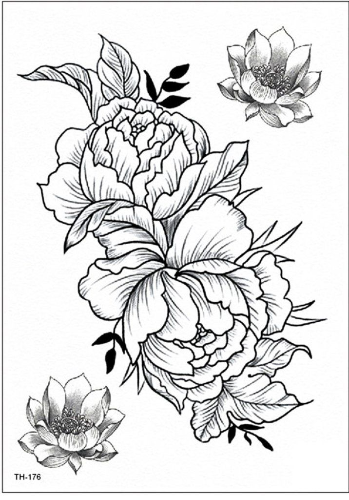 Tattoo Outlines Flowers Black And White: Garnet Delicate Black Peony Flower Outline Temporary