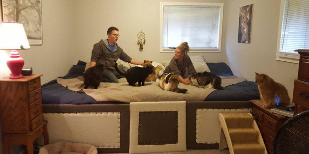 This Couple Built An 11 Foot Mega Bed So They Could Sleep With All Their Pets