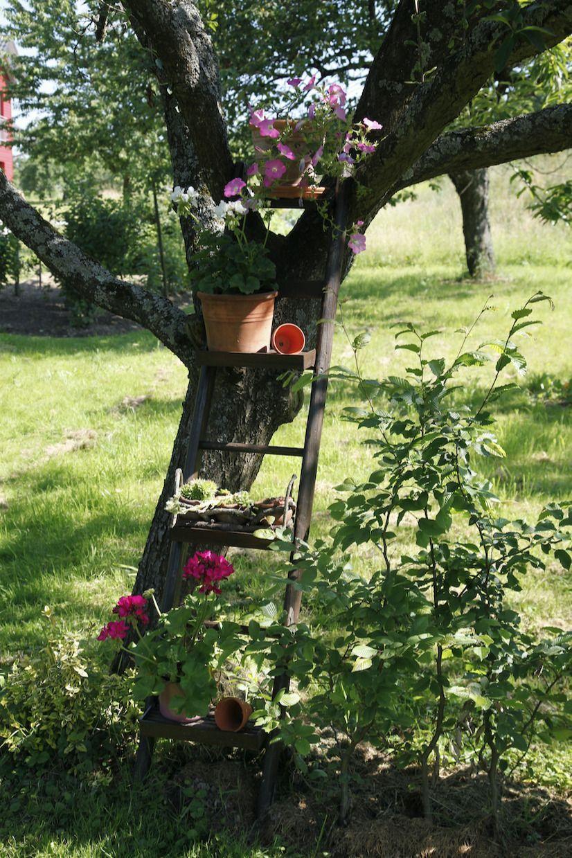 Upcycling Idee Selbstgemachtes Blumenregal Schraubt Man An Eine Alte Leiter Bretter So Wird Diese Zum Dekorativen Gart In 2020 Garden Deco Garden Design Garden Decor