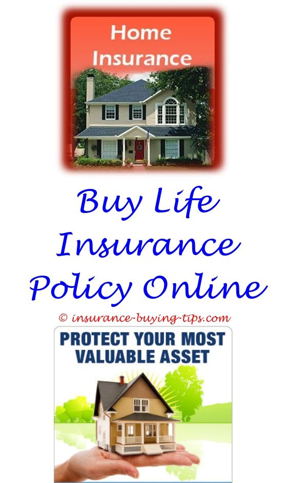 Term Life Insurance Quotes Best Auto Insurance Quotes  Buy Health Insurance Term Life