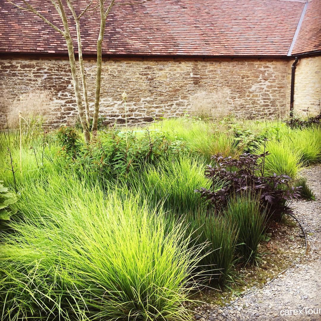 Piet Oudolf S Planting Design In The Hauser Wirth Gallery Courtyard In Somerset Contemporarygardenlandscaping Tuin Ideeen Tuin Siergrassen