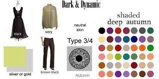 Znalezione obrazy dla zapytania zylas color types