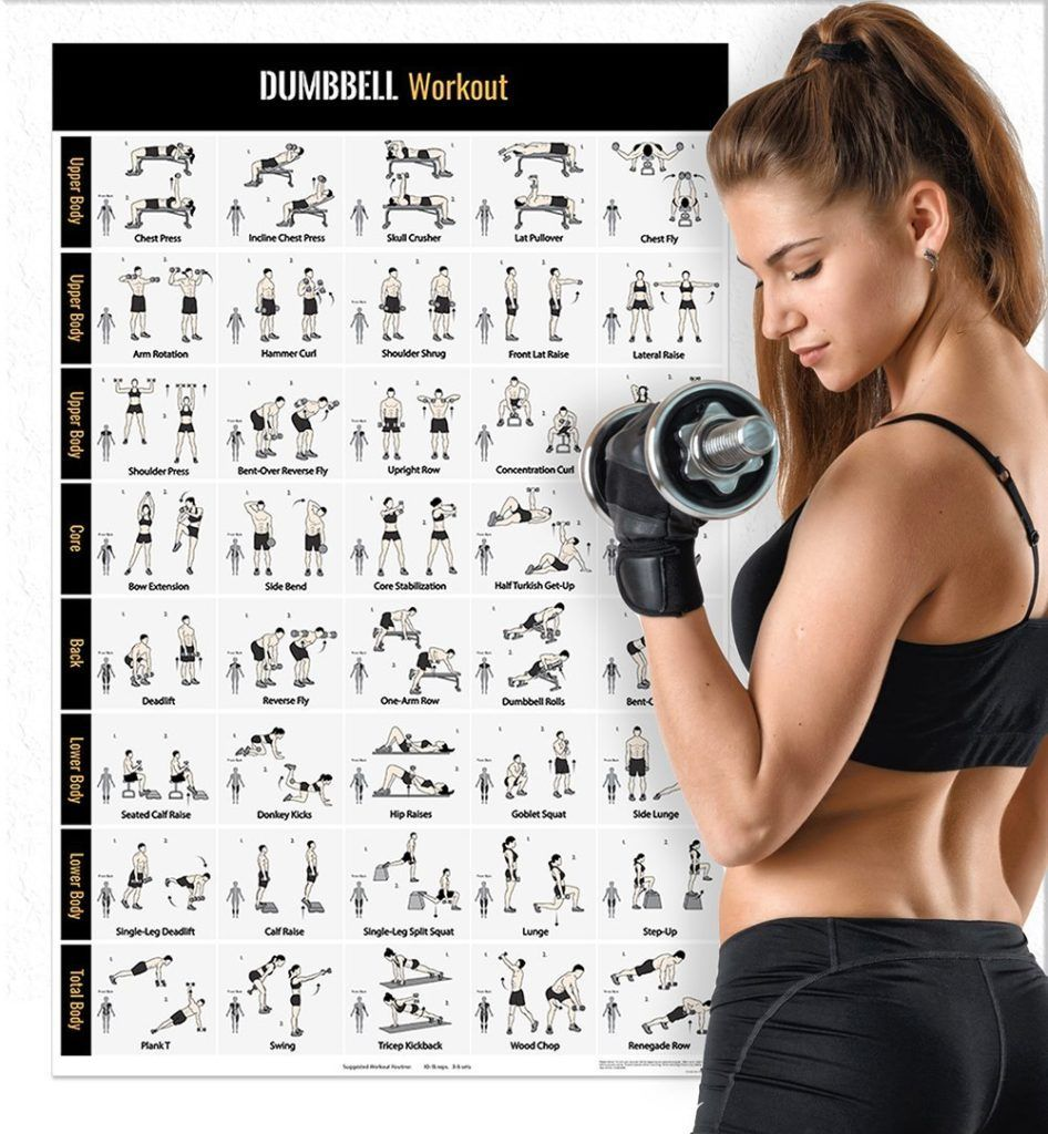 #bodybuilding #dumbbell #routines #building #training #strength #workouts #exercise #motivate #worko...