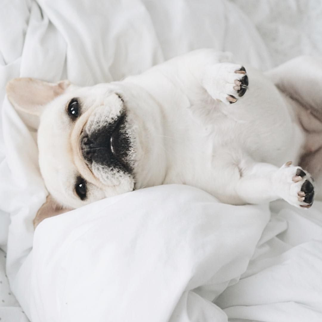 Hi. Want to cuddle?