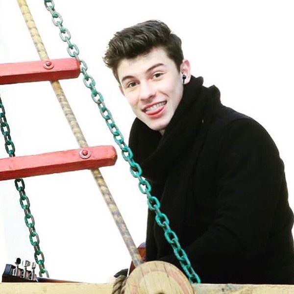 there is no amount if words that can explain on how much we love Shawn hahaha