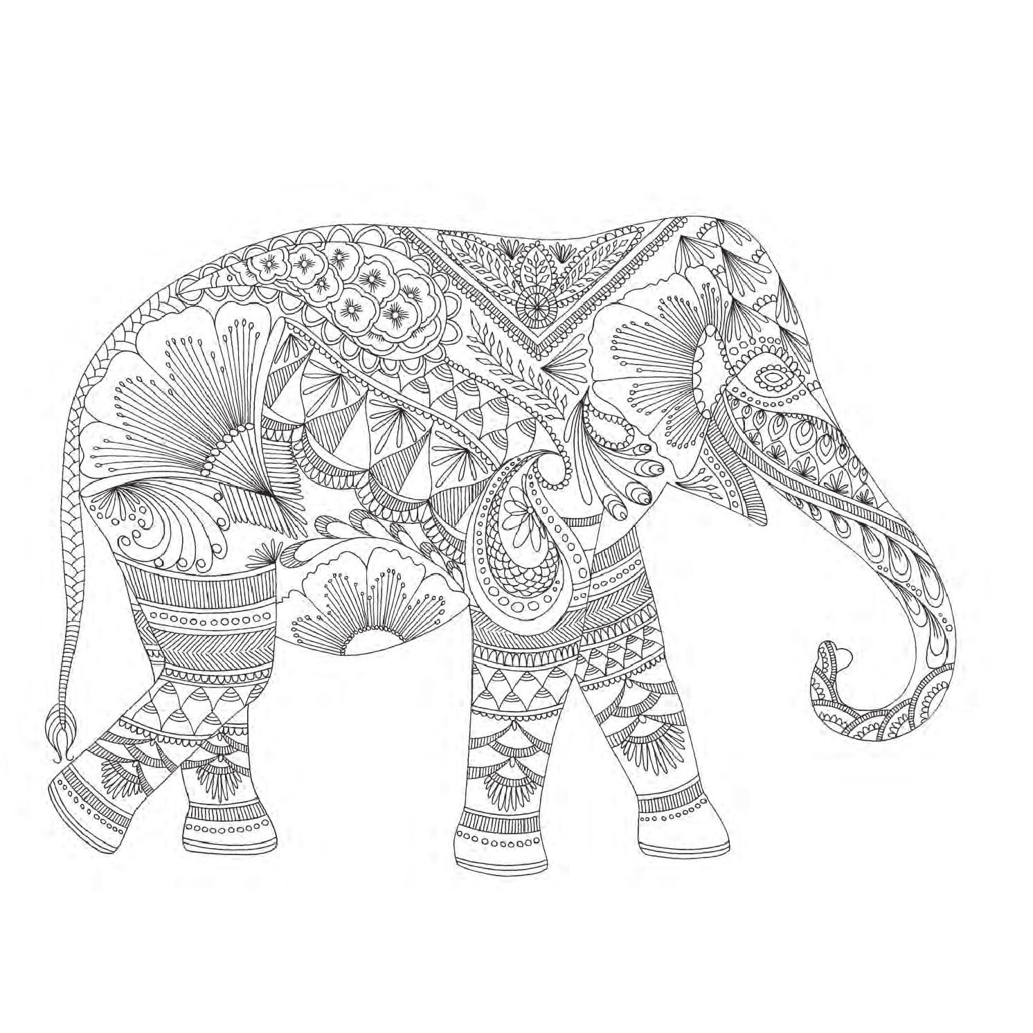 Millie Marotta's Animal Kingdom | owl coloring pages ...