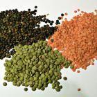 Indian lentils in the Vegan Style - A Vegan Blogging Extravaganza at The Flaming Vegan