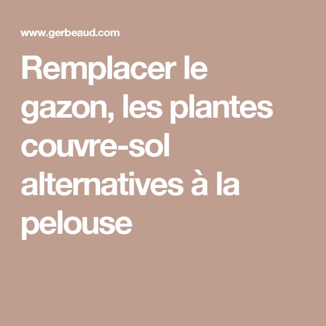 remplacer le gazon, les plantes couvre-sol alternatives à la