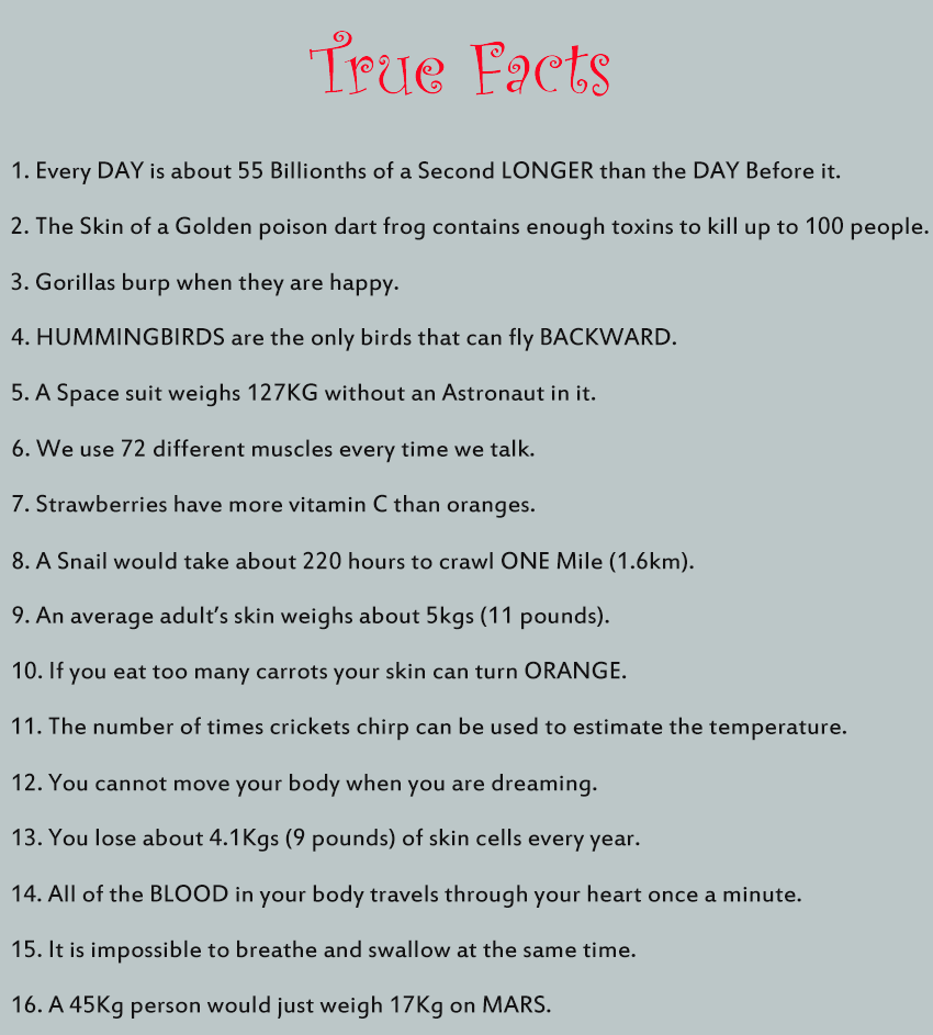 strange facts in more