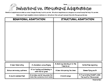 behavioral vs structural adaptations sorting worksheet 4 little baers teachers pay. Black Bedroom Furniture Sets. Home Design Ideas