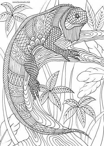 intricate iguana coloring pattern fantasy animals free coloring - Coloring In Patterns