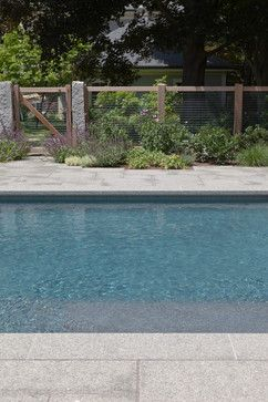 Planting Around Pool To Soften Hard Surfaces Plants Around Pool Pool Landscaping Garden Layout