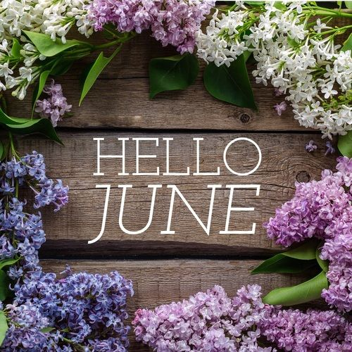 Image result for hello june quotes