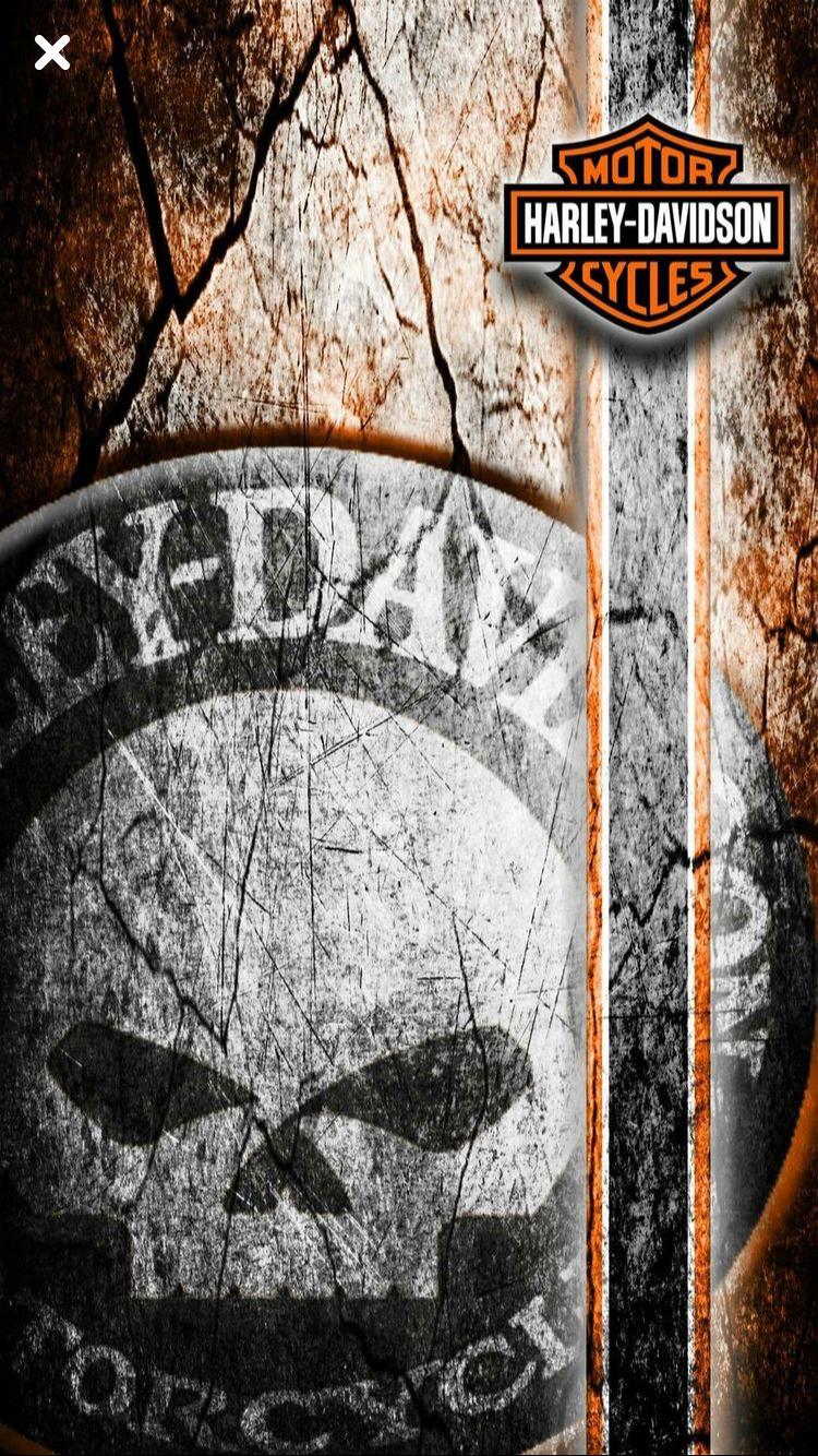Pin By Brad Thomas On Logos Harley Davidson Wallpaper Harley Davidson Motorcycles Harley Davidson Bikes