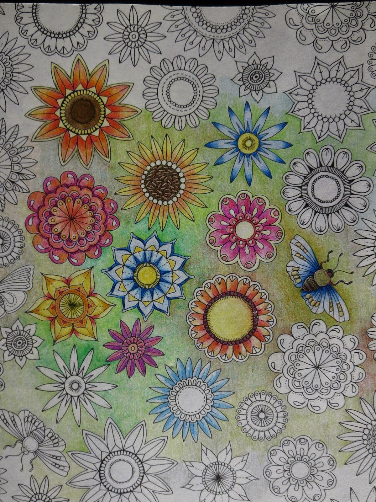 Passion For Pencils My Secret Garden Colouring Book Part 6 Testing