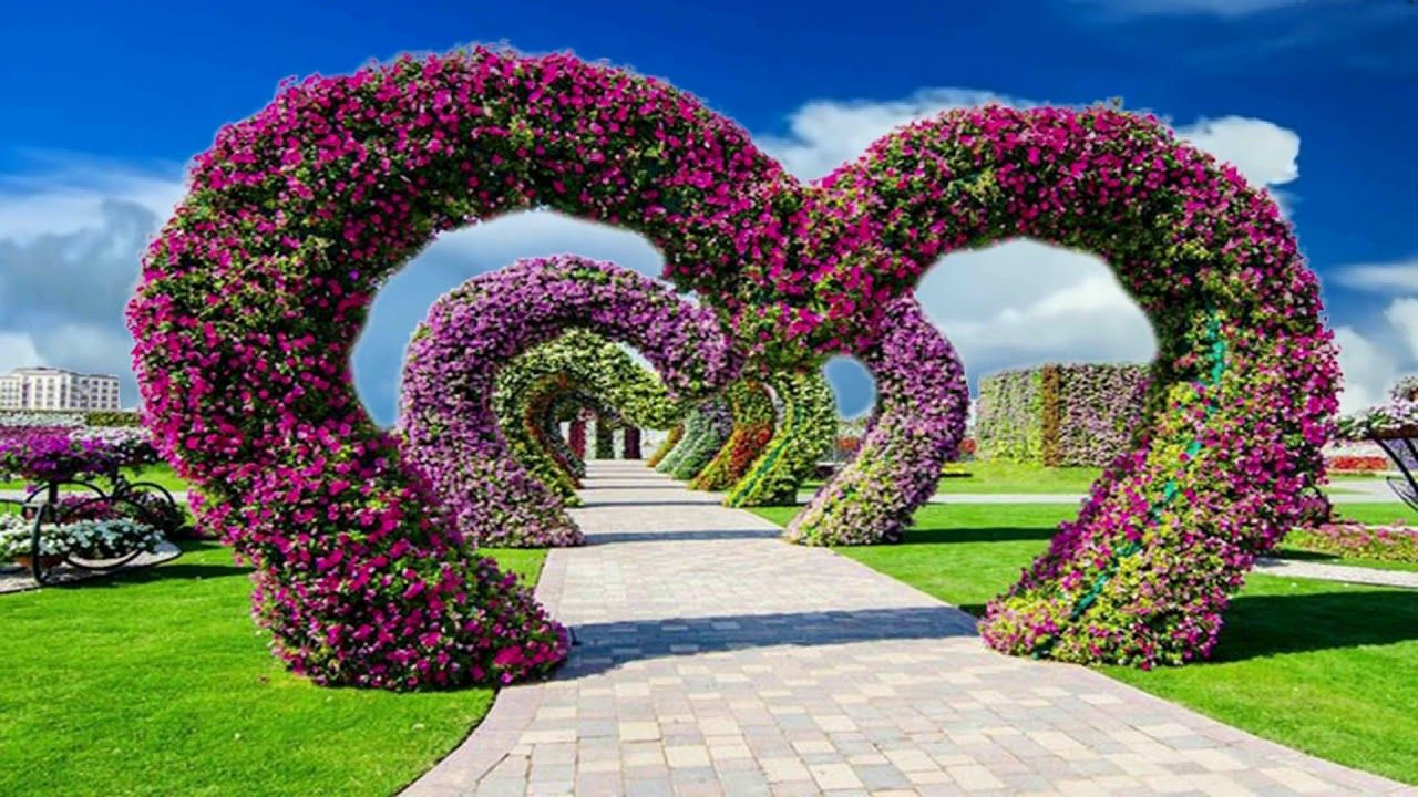 Beautiful Nice Animation With Natural Flower Scenery Dream Background V Dream Background Greenscreen Video Editing Apps