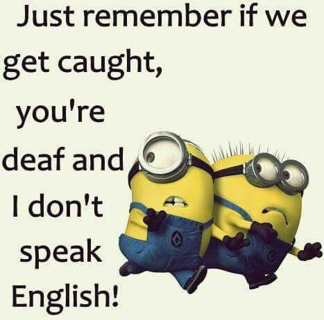Lol Your Partner And Crime Funny Quotes Minions Minions