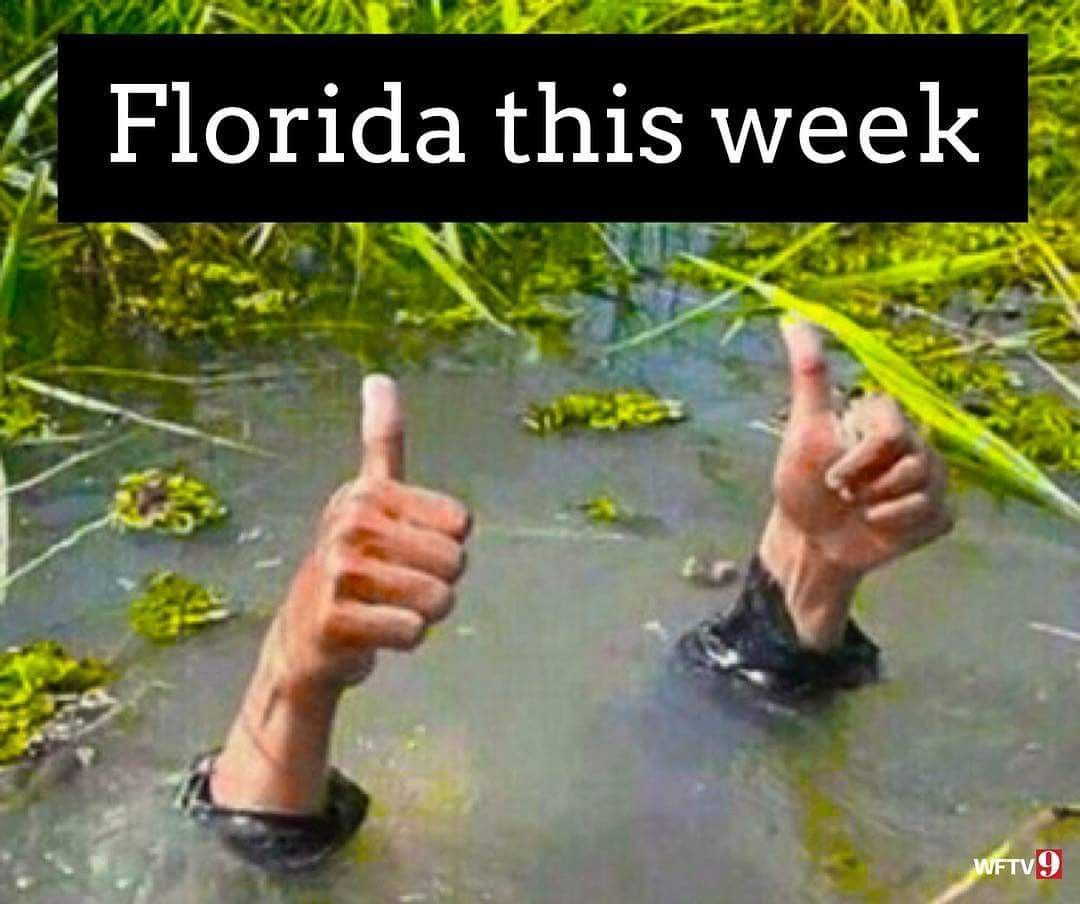 Pin by Deborah Hamilton on Florida Florida funny