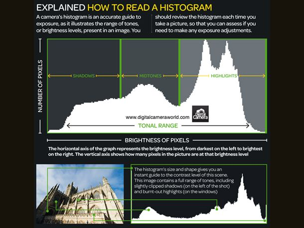 Your digital camera's histogram serves as a guide to help you better underststand your exposure. To this end, it aims to illustrate the range of tones in a scene. On the left of your histogram you'll find the extreme of dark shadows, while on the far right you will find your bright highlights.
