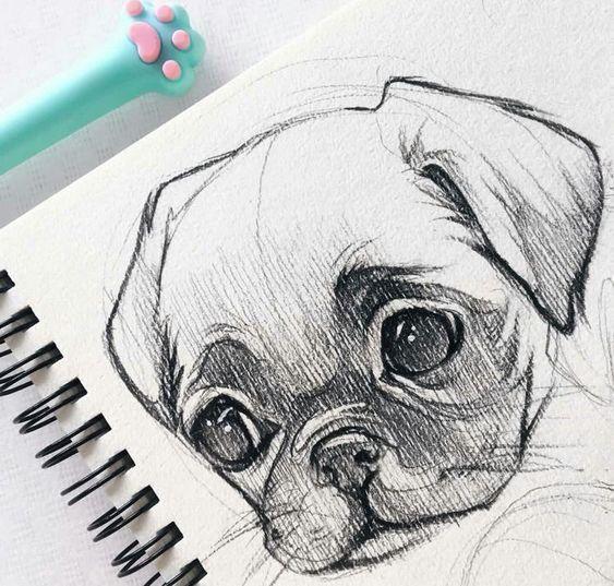 40 idées de dessins de croquis d'animaux gratuits et faciles – #Animal #art #Dessin … – The World