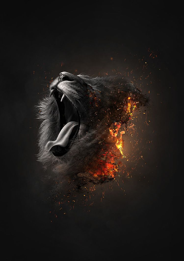 Awesome Digital Art Collection Of Various Artists Lion Art Lion Wallpaper Lion Pictures Iphone full hd black lion wallpaper