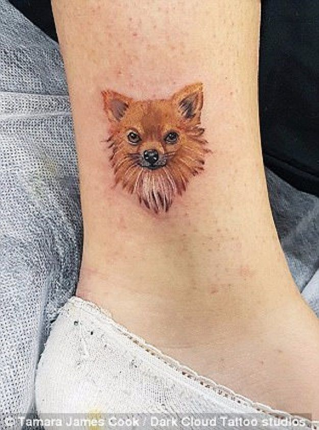 cb2d2ea05 Tattoo Ink Made of Ashes of Pets Is the New Way to Remember Pets ...
