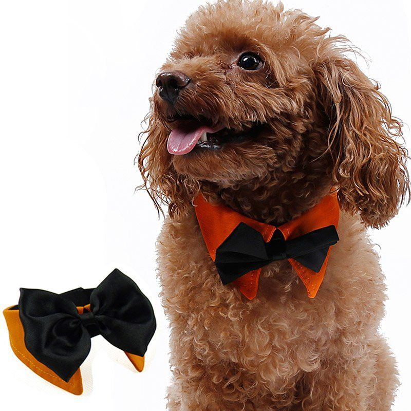 Three Varieties: Tux Collar and Bow Tie