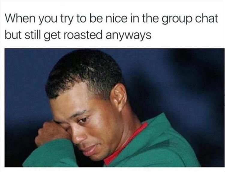 Anyone Who Has Been In A Group Chat Can Relate To These 15 Pics Funny Roasts Funny Pictures Can T Stop Laughing Laughing So Hard