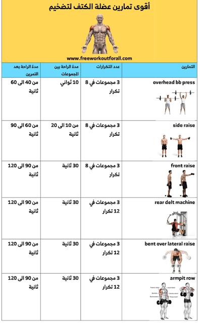 جدول تمارين الكتف Shoulder Workout Workout Gym
