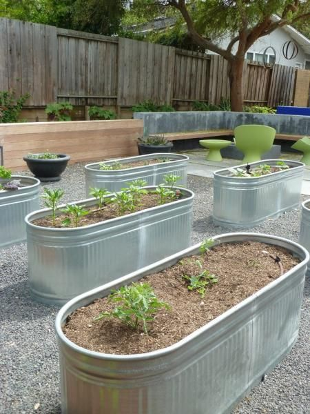 20 Galvanized Tub And Bucket Garden Ideas For Small 400 x 300